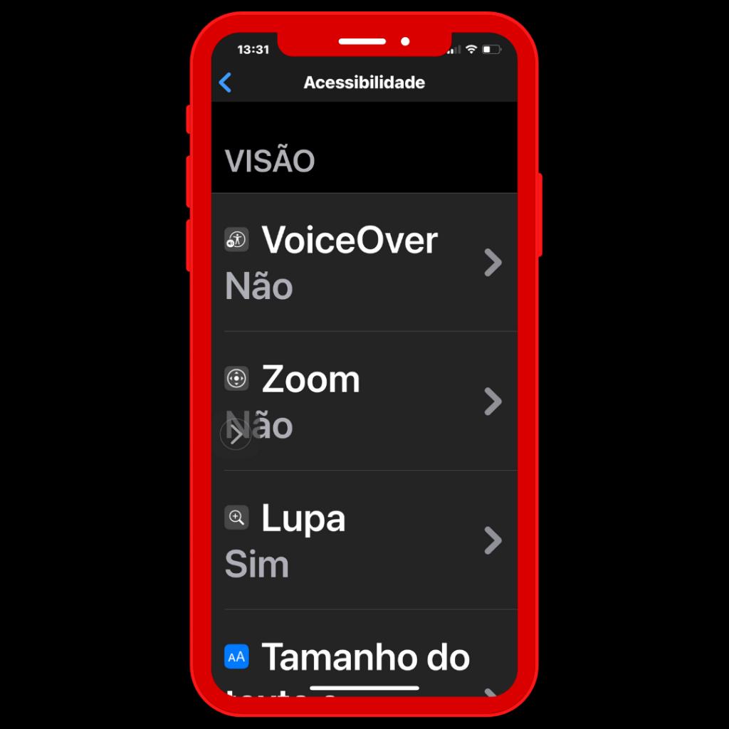 Ecrã do iPhone, Acessibilidade: função Visão.